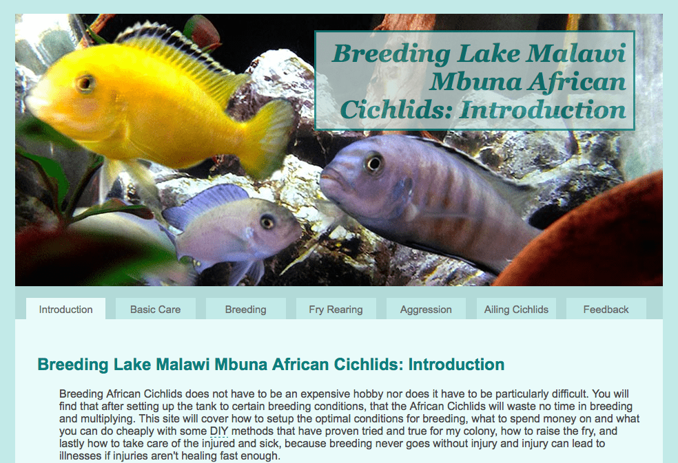 A Screen Shot of the African Cichlid Website